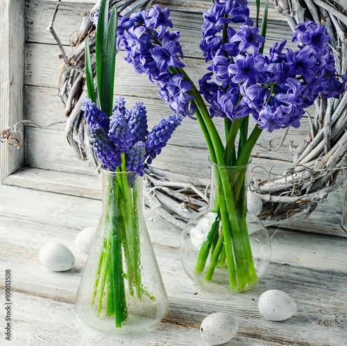 Papiers peints Jardin Still life with hyacinths