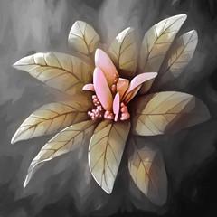 Fototapetapainting still life flower