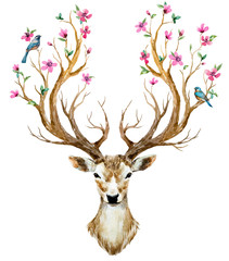 Fototapeta Boho Watercolor hand drawn deer