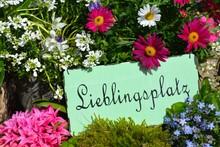 Frühlingsblumen - Garten - Li...