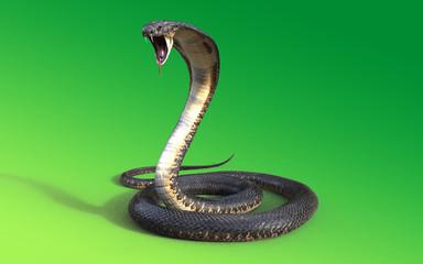 3d King cobra snake isolated on green background