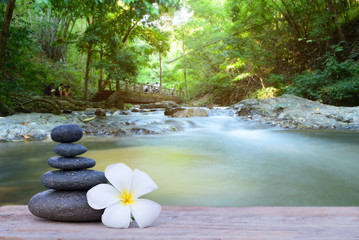 white frangipani flower and stone zen spa on wood with blurred w