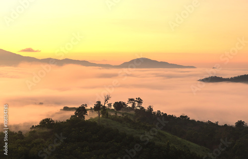 Fotobehang Zwavel geel scenery of misty morning on the top of the hill during sunrise at yun lai viewpoint, pai, thailand.