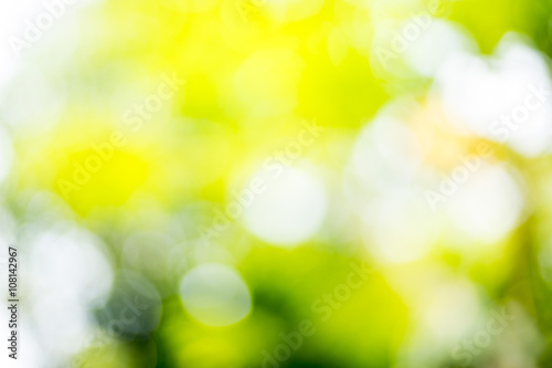 Tuinposter Purper outdoor bokeh with sun rays(Yellow and green tone)