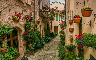 Fototapeta piękna uliczka z kwiatami w Spelo Włochy