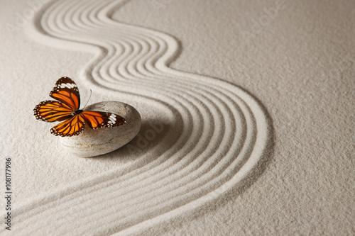 Tuinposter Vlinder Zen butterfly