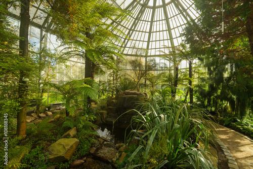 garten frankfurt, botanischer garten frankfurt botanic garden - buy this stock photo, Design ideen