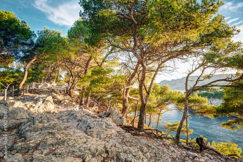 Photo  Beautiful nature of Calanques on the azure coast of France. Cala