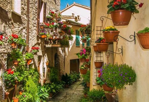 spello-wioska-kwiatow