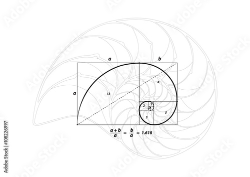 Golden section (ratio, divine proportion) and golden spiral on black and Shell l Poster Mural XXL