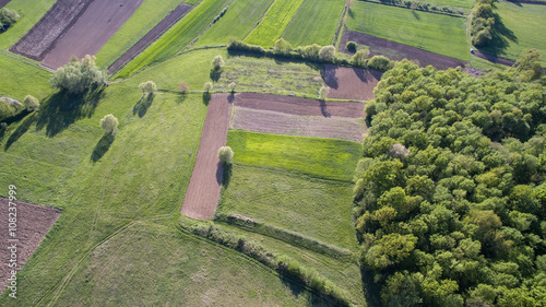 Poster Luchtfoto Aerial view of rural agricultural fields and forest