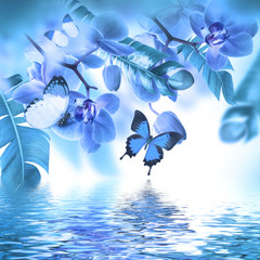 Fototapeta Optyczne powiększenie Floral background of tropical orchids