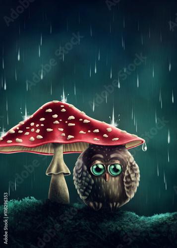 Obraz na płótnie Mała sowa pod parasolem z muchomora