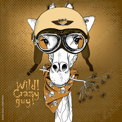The poster with the portrait of the giraffe wearing the motorcycle helmet. Vector illustration.