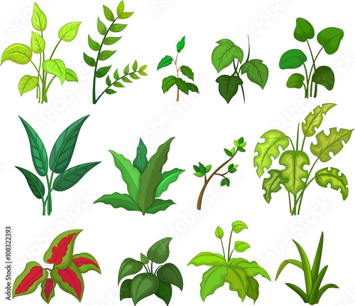 Collection Of Leafs Cartoon Buy This Stock Vector And Explore Similar Vectors At Adobe Stock Adobe Stock