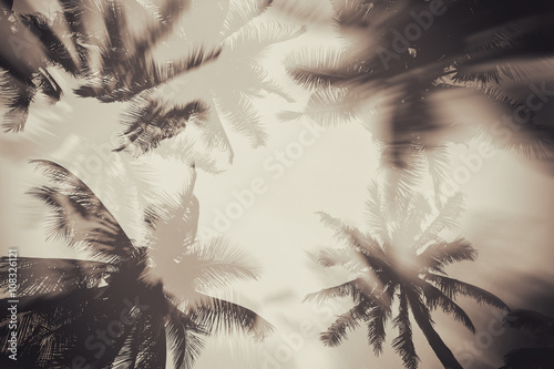 Poster Retro Silhouette palm tree with double exposure effect in vintage filter (background)