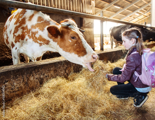Kid feeding cow © 2xSamara.com
