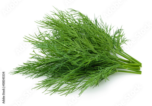 Fotomural A bunch of fresh dill