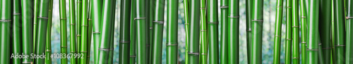 Tuinposter Bamboe green bamboo background