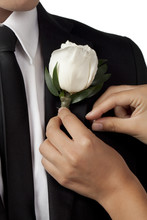 Putting White Rose Boutonniere