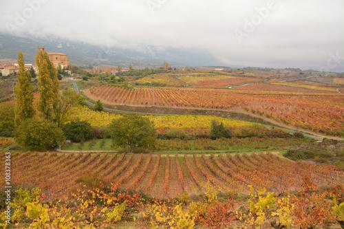 colores de otoño en la Rioja