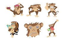 Six Monkeys In Diferents Positions And On Only The Face.