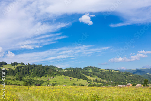 Staande foto Bleke violet Idyllic landscape in the Alps with fresh green meadows and blooming flowers and snow-capped mountain tops in the background