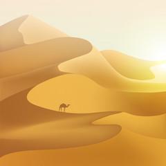 FototapetaDesert dunes landscape.
