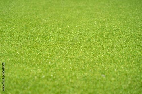 Poster Golf green plasstic grass