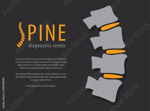 Fotografía  Spine anatomy with disc, medical conceptual infographic vector