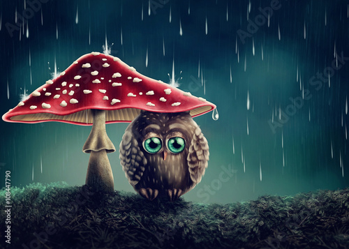 Spoed Foto op Canvas Uilen cartoon Little owl under mushrooms