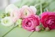 canvas print picture - Frische Blumen auf rustikalem Hintergrund