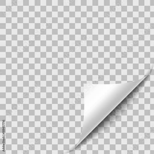 Fototapeta Curled Paper Sheet Corner With Shadow. Design Element On Transpa obraz