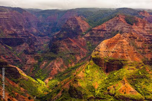 Recess Fitting Deep brown Waimea Canyon, Kauai, Hawaii