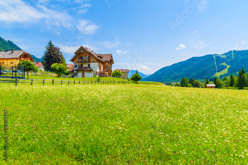 Poster Lime groen Traditional alpine houses on shore of Weissensee lake in summer landscape of Carinthia land, Austria