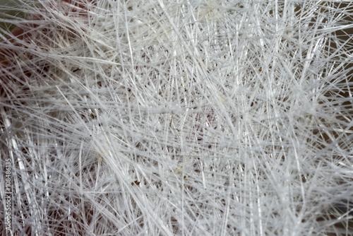 Photo White fiberglass background