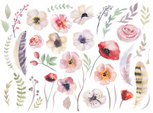 Watercolour Boho Flower Set. F...