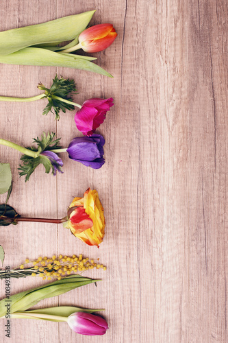 kwiaty-do-kwiaciarni