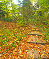 Fototapeta Schody Nice autumnal scene