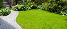 Garden  Path With Grass