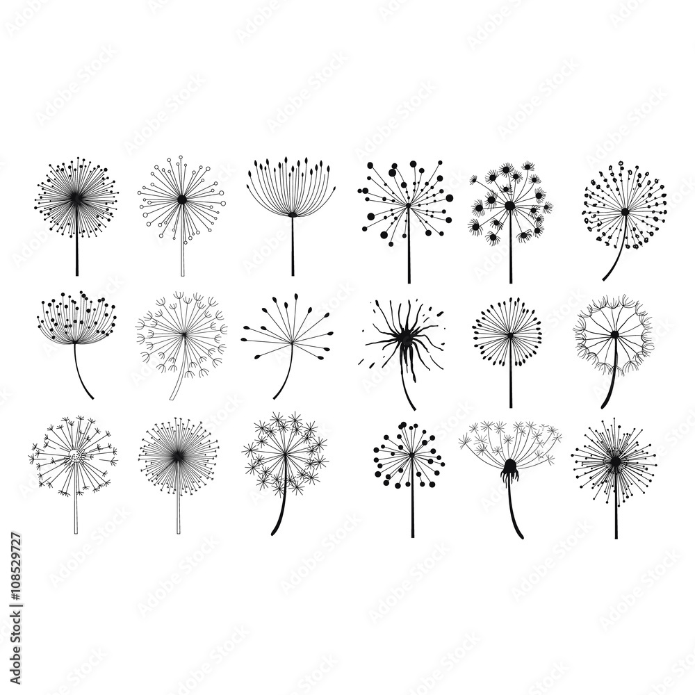 Fototapety, obrazy: Dandelion Fluffy Seeds Flowers Set