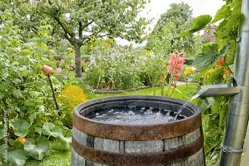 Fototapeta premium Beczka przeciwdeszczowa w ogrodzie