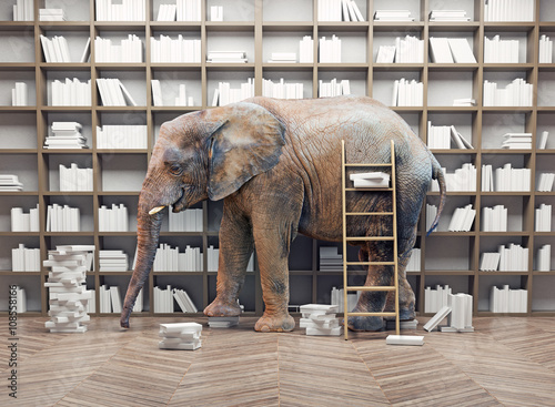 Foto op Aluminium Olifant elephant in the library
