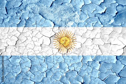 Fotografie, Tablou  Argentina flag