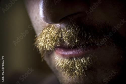 Fotografie, Obraz  Dramatic Serious Mustache