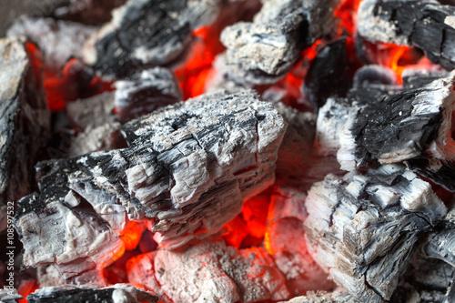 Fotografie, Obraz  Firewood after burning become ash