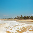 GOA Coast Landscape