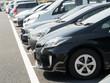 駐車場に並んだ乗用車