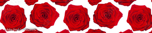 Tuinposter Roses header panorama pattern flower rose red heart-shaped