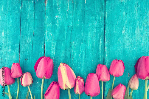 Frame of tulips on turquoise rustic wooden background.
